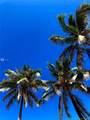 777 Ocean Dr - Photo 28