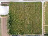 28240 207th Ave - Photo 14