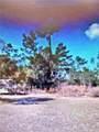 43 Ct & 44th Cir Marion Oaks Golf Way - Photo 3