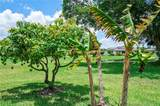5509 Mulberry Dr - Photo 47