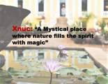 Merida Yucatan Mexic Tekax Yucatan - Photo 27