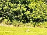 5785 Culebra Ave - Photo 1