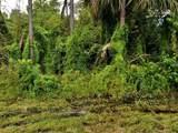 2882 Fluvia St - Photo 2