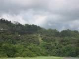 1 Carate Osa Peninsula - Photo 32