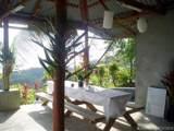 1 Carate Osa Peninsula - Photo 34