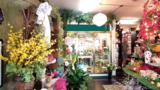 Flower Shop Andrews Ave - Photo 3