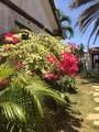 Samaira Beach Isla De Margarita - Photo 14
