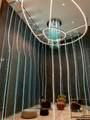 1000 Brickell Plaza - Photo 18