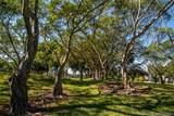 2306 Cypress Bend Dr - Photo 38