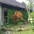 17010 264 St - Photo 3