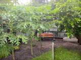 1954 24th Ave - Photo 7