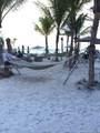 2602 Hallanadale Beach - Photo 34