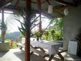 1 Carate Osa Peninsula - Photo 38