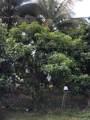 130 Miami Gardens Rd - Photo 6