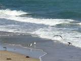 3570 Ocean Blvd - Photo 1