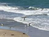 3570 Ocean Blvd - Photo 3
