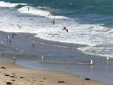 3570 Ocean Blvd - Photo 5