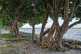 1750 Bayshore Dr - Photo 29