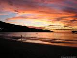 1 Carate Osa Peninsula - Photo 19