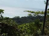 1 Carate Osa Peninsula - Photo 23