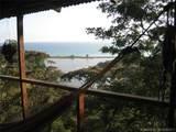 1 Carate Osa Peninsula - Photo 31