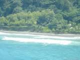 1 Carate Osa Peninsula - Photo 5