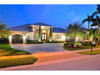15256 SW 37th St, Davie, FL 33331 (MLS #A10254580) :: Green Realty Properties