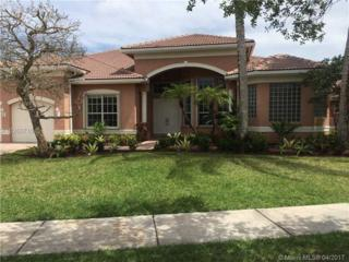 4117 SW 195th Ter, Miramar, FL 33029 (MLS #A10266716) :: Green Realty Properties