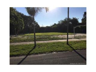 17631 NE 2nd Ct, North Miami Beach, FL 33162 (MLS #A10246170) :: The Riley Smith Group