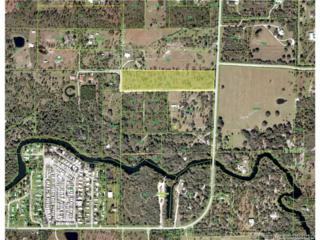 34831 Washington Loop Rd, Other City - In The State Of Florida, FL 33982 (MLS #A10264094) :: The Riley Smith Group