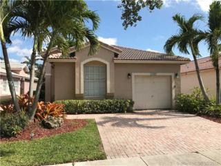 17082 NW 11th St, Pembroke Pines, FL 33028 (MLS #A10283263) :: The Riley Smith Group