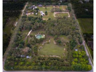25005 SW 193rd Ave, Homestead, FL 33031 (MLS #A10036790) :: Green Realty Properties