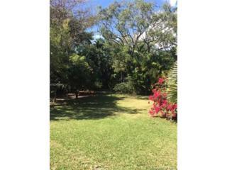 3585 Palmetto Ave, Coconut Grove, FL 33133 (MLS #A10242594) :: The Riley Smith Group