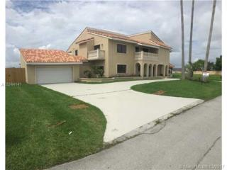 10720 SW 139th Rd, Miami, FL 33176 (MLS #A10244141) :: The Riley Smith Group