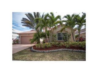 1188 Cedar Falls Dr, Weston, FL 33327 (MLS #A10262999) :: Green Realty Properties