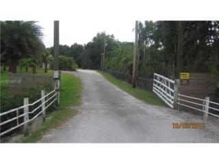 Southwest Ranches, FL 33330 :: Green Realty Properties