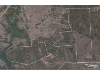 Pembroke Pines, FL 33029 :: Green Realty Properties