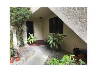 3205 Old Oak Ln #1106, Hollywood, FL 33021 (MLS #A10280285) :: Castelli Real Estate Services