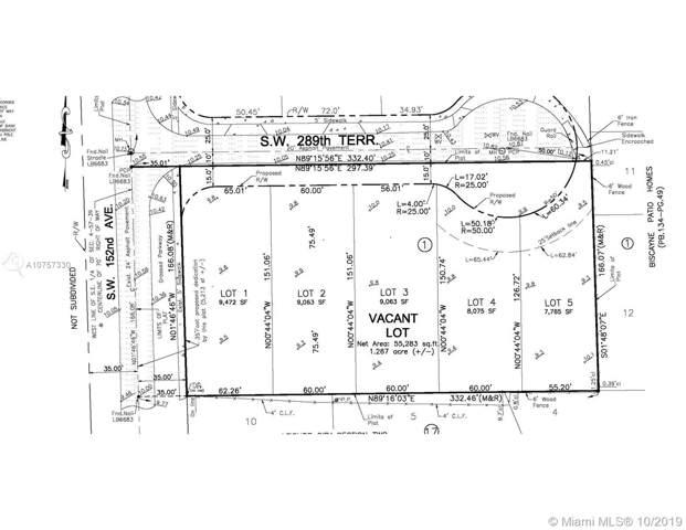 151XX SW 289th Ter, Miami, FL 33033 (MLS #A10757330) :: Grove Properties