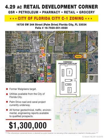 16730 SW 344th St, Florida City, FL 33034 (MLS #A10763303) :: Berkshire Hathaway HomeServices EWM Realty