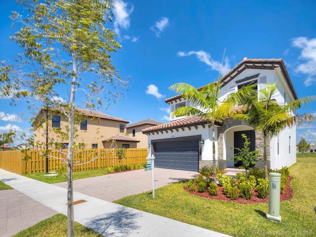 11725 SW 253rd St, Homestead, FL 33032 (MLS #A10770054) :: The Adrian Foley Group