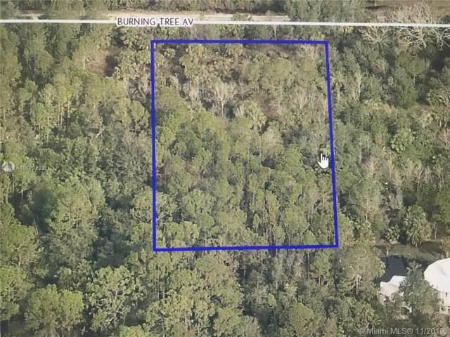 0 Burning Tree Ave, Cocoa, FL 32926 (MLS #A10779282) :: Berkshire Hathaway HomeServices EWM Realty