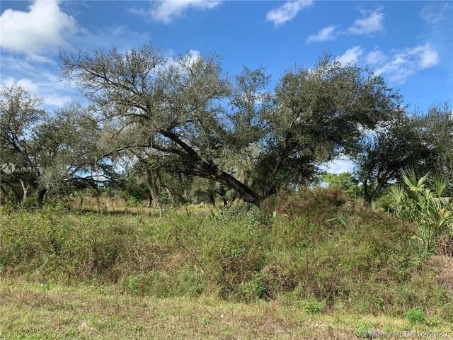 350 S Jinete, Clewiston, FL 33440 (MLS #A10819786) :: Grove Properties
