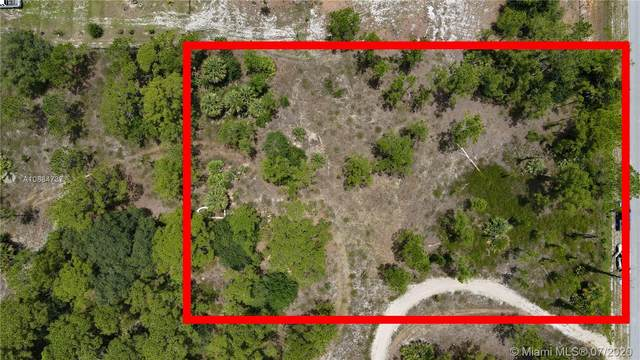 675 S Hacienda St, Clewiston, FL 33440 (#A10884737) :: Real Estate Authority
