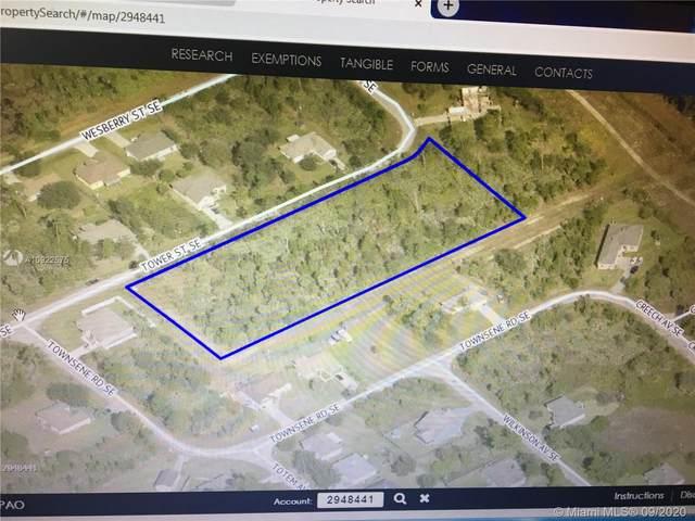 1150 Tower Street Se, Palm Bay, FL 32909 (MLS #A10922575) :: Berkshire Hathaway HomeServices EWM Realty
