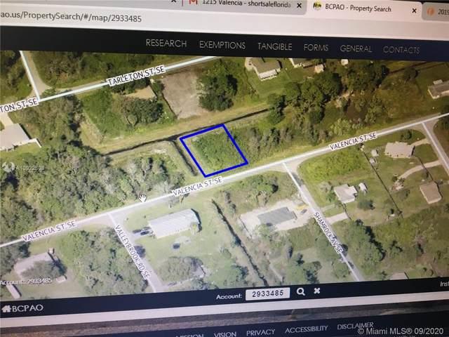1231 Valencia Street Se, Palm Bay, FL 32909 (MLS #A10922608) :: Berkshire Hathaway HomeServices EWM Realty