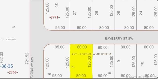 1090 Bayberry St Sw, Palm Bay, FL 32908 (MLS #A10929348) :: Berkshire Hathaway HomeServices EWM Realty
