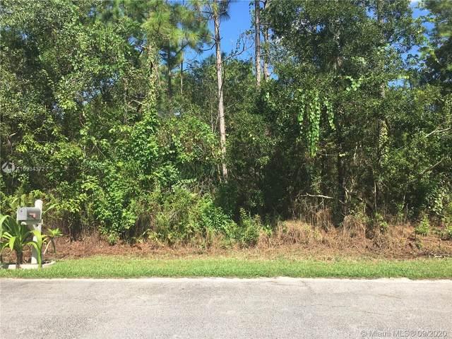 1441 Vander Ave Se, Palm Bay, FL 32909 (MLS #A10934372) :: Berkshire Hathaway HomeServices EWM Realty