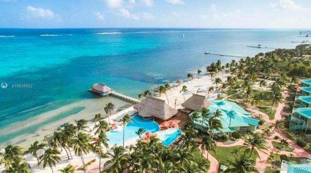 6.5 Miles N Ambergris Caye, , FL 00000 (MLS #A10936652) :: Castelli Real Estate Services