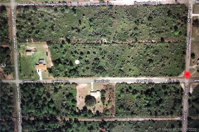 0 Camellia Dr., Lake Wales, FL 33898 (MLS #A10940032) :: Berkshire Hathaway HomeServices EWM Realty